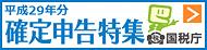 2017年(平成29年分)確定申告