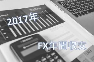 2017年FX年間収支