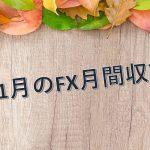 11月のFX収支